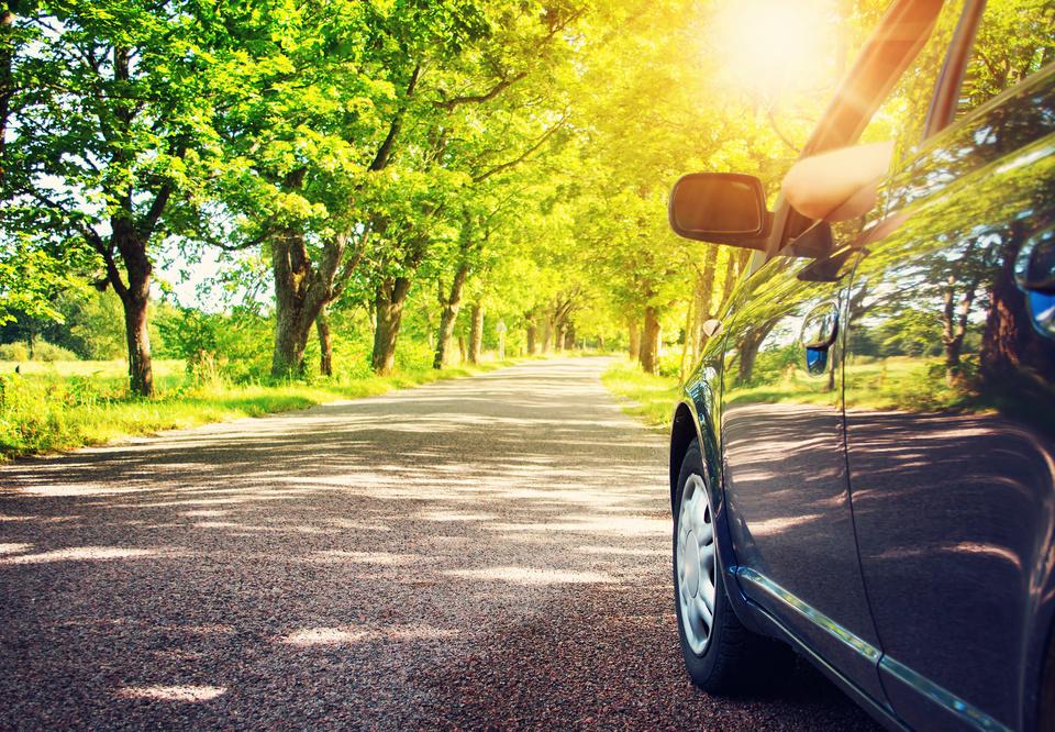 Cuidados com o carro durante a primavera